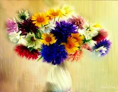 "Flowers bouquet to Tim (♣Cleide@.♣) Tags: © ♣cleide♣ brazil 2018 photo art digital ps bouquet flores ""tim noonan"" artdigital exotic ""netartii"" shining sotn awardtree"