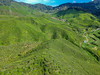 malaysia-0099 (ericvdb) Tags: cameronhighlands highlands teaplantation plantation malaysia