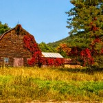 Lake Placid  New York - Vintage Homestead Abandoned -  Autumn thumbnail