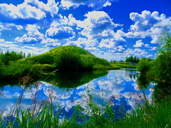 It was a picture perfect day! (+1) (peggyhr) Tags: peggyhr lake clouds reflections hills trees grasses green blue white spring dsc04858a bluebirdestates alberta canada thegalaxy thegalaxystars level1pfr thegalaxylevel2 halloffamegallery thelooklevel1red