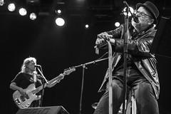 Pereubu_010_JKung (Jeremy Küng) Tags: pereubu frison fribourg concert live switzerland postpunk artpunk 2018 davidthomas