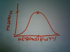 freedom/responsibility