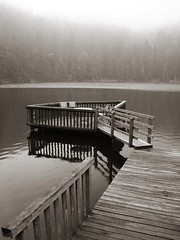silence (Mace2000) Tags: mist lake cold nature fog germany landscape deutschland 350d bravo natur sage duotone mermaid legend landschaft schwarzwald blackforest myth mummelsee 123bw mace2000 img4607 countryscenery