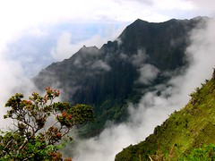 Clouds lifting at Kalalau Lookout (Walt K) Tags: ocean statepark hawaii coast lookout kauai kalalau napali kokee 123faves waltk