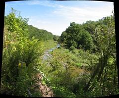 a ravine in oakville, ontario