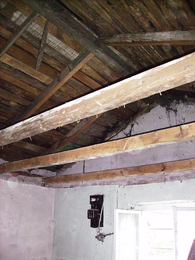 gartenhaus dach perfect with gartenhaus dach holz blech gartenhaus enzo b xcm trapezblech. Black Bedroom Furniture Sets. Home Design Ideas