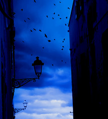 Blue OverNight (*MSM*) Tags: sardegna city blue italy night photo italia sardinia foto photos fav crows sardinien msm allrightsreserved citt alghero alguer peana abigfave peanam massimilianopeana rivieradelcorallo mailmeatmasspeanayahooit