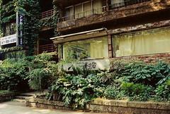 Gallery  (gracias!) Tags: green film japan architecture tokyo pentax ivy aoyama omotesando mz5  dojunkaiapartment