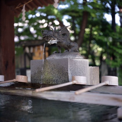 Shrine Water
