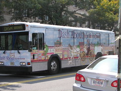 Alexandria Dash About bus, painted to promote tourism