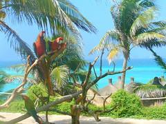 Isla Mujeres (Hugotepic) Tags: mexicano caribe