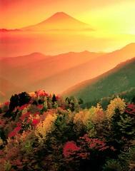 SIP1023112 (miyukiutada) Tags: fall abigfave superbmasterpiece flickrdiamond
