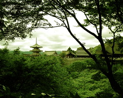 Kizomizu From A Distance - by James Disley
