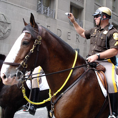 NYPD Horse Parade (Jimmy Legs) Tags: horse newyork streets cops worldtradecenter police mounted wtc mounties