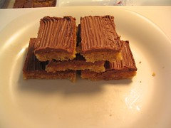 Very Disappointing Oatmeal Bars with Chocolate Icing