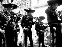Mariachis by jlmaral on flickr