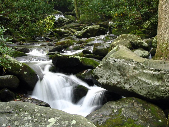 Smokey Mountain stream