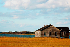 Abandon (CiaoChessa) Tags: blue autumn sky usa lake ny newyork fall beach water field rural season geotagged gold countryside nikon october peace seasons forsale unitedstates sale map anniversary farm sold country perspective minimal longisland abandon lonely sell simple geotag allrightsreserved eastcoast theeastend abandonme nikonstunninggallery abigfave ciaochessa superhearts monicalshulman copyrightmonicalshulman httpciaochessablogspotcom ciaochessablogspotcom
