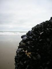 Tresaith 07/10/06 (LLeufer) Tags: sea beach bay coast seaside sand rocks village weekend bae ceredigion mor tywod traeth creigiau glanymor arfordir tresaith pentref lanmor lanymor penwythnos
