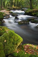 Golitha Falls (simpologist) Tags: longexposure london woodland waterfall moss stream cornwall golithafalls