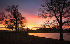 A Pirton sunset - Explore 111216 (cliveg004) Tags: sunset trees lake pirtonpool croome worcestershire pirton evening countryside ruralwater sky colour nikon d5200