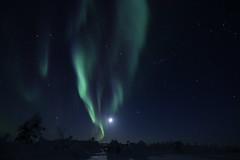 Lapinborealis Northern Lights - 22/03/2018 (Nicolaponie) Tags: borealis lapland finland aurora 2018 love dream passion sky clear canon 70d eos tokina 1116 f28 wonderful moon full stars