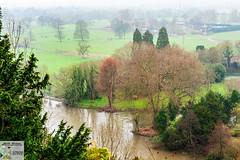 Clive_DSC8739 (Nick Woods Photography) Tags: landscape view viewpoint riverview river riverthames water waterscape waterreflections waterscene freshwater trees treereflections cliveden nationaltrust nt