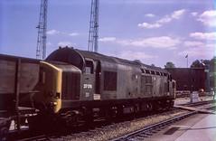 Transitional state (Nodding Pig) Tags: britishrail templemeads railway station train england greatbritain uk 1974 class37 dieselelectric locomotive englishelectric type3 37176 6876 westernregion bristol film scan transparency 35mm colour positive kodachrome prinzmastermaticiii jun74019101