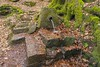 "Pfälzer Wald (Palatinate Forest) (barbmz) Tags: ""pfälzer wald"" ""palatinate forest"" biospherereserve quelle well water wasser"