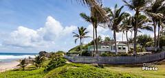 Barbados - 2017-14 (@Digbeyphoto) Tags: barbados bathsheba caribbean bridgetown saintmichael bb