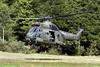 XW211_WestlandPumaHC1_RoyalAirForce_SPTA_Img02 (Tony Osborne - Rotorfocus) Tags: westland aerospatiale puma command sa330 force hc1 helicopter joint salisbury spta 2010 training air raf plain area jhc