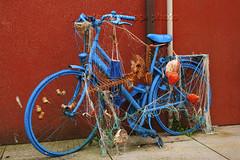 Caorle, Venezia (filippi antonio) Tags: caorle venezia veneto italia bicicletta bici bike canon città arte strada rete pesce rosso blu colori blue red brightcolors colors
