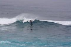 IMG_7095 (cgoering) Tags: pdc water surf surfing waves jaws north shore ocean sea coast fun recreation sports culture board boards tides tide usa us unitedstates american unitedstatesofamerica peahi northshore hawaii maui 2009