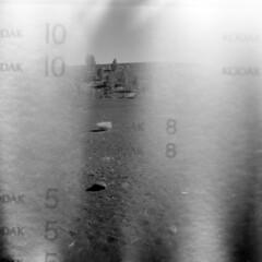 Kodak Moment #1 (LowerDarnley) Tags: trees numbers backingpaper holga lightleaks volcano southwest arizona az flagstaff
