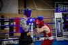 31040 - Hook (Diego Rosato) Tags: boxe boxing pugilato boxelatina ring match incontro rawtherapee nikon d700 2470mm tamron punch pugno hook gancio