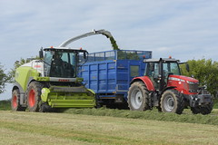 Claas Jaguar 980 SPFH filling a Broughan Engineering Mega HiSpeed Trailer drawn by a Massey Ferguson 7720S Tractor (Shane Casey CK25) Tags: claas jaguar 980 spfh filling broughan engineering mega hispeed trailer drawn massey ferguson 7720s tractor mf agco red self propelled forage harvester traktor traktori tracteur trekker trator ciągnik innishannon silage silage18 silage2018 grass grass18 grass2018 winter feed fodder county cork ireland irish farm farmer farming agri agriculture contractor field ground soil earth cows cattle work working horse power horsepower hp pull pulling cut cutting crop lifting machine machinery nikon d7200