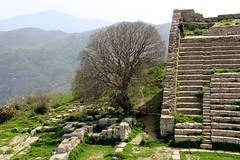 IMG_8033 (Vito Amorelli) Tags: segesta sicily dorictemple greektheater