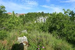 IMG_0749n (rudolf.brinkmoeller) Tags: wandern slowenien karst landschaft natur matavun