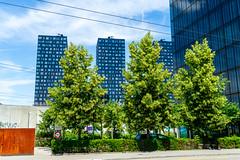 Trees and houses: Three and four (1/2) (jaeschol) Tags: altstetten europa europe kantonzürich kontinent kreis9 schweiz stadtzürich suisse switzerland
