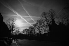 IMG_3821 (JetBlakInk) Tags: art composition foliage lowkey mono perspective silhouette skyskape skyline streetphotography treeline shadowyfigure streetscene chemtrails contrails airpollution