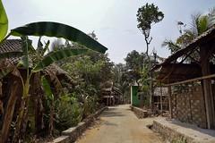 """INDONESIEN, Java, Besuch im Dorf Somokerto, verlassen,  17285/9808 (roba66) Tags: reisen travel explorevoyages urlaub visit roba66 asien südostasien asia eartasia """"southeastasia"""" indonesien indonesia """"republikindonesien"""" """"republicofindonesia"""" indonesiearchipelago inselstaat java somokorto dorf urig landwirtschaft rural"""