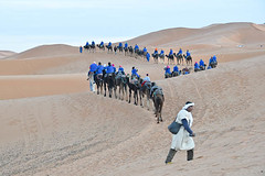 Caravan (meg21210) Tags: morocco caravan camels people dromedaire dromedary sahara desert ridingcamels erfoud tuareg dromedaries camel dunes