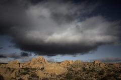 _DSC7762 (andrewlorenzlong) Tags: joshua tree national park joshuatree joshuatreepark joshuatreenationalpark california desert