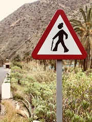 Meda in Valle Hermoso (Jmrm85) Tags: islascanarias lagomera iphonex