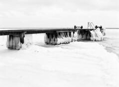 Ispanser - Skodsborg strand (LarsHolte) Tags: asahi pentax 645 pentax645 645n 6x45 smcpentaxfa 4585mm f45 120 film 120film foma fomapan fompan100 fompan100professional 100iso mediumformat analog analogue blackandwhite classicblackwhite bw monochrome filmforever ishootfilm filmphotography xtol homeprocessing larsholte skodsborg strand danmark denmark beach ice winter øresund