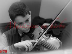 francis-78_37576482306_o (pixel3rhuys) Tags: guitaredâamour guitared'amour guitareespagnole guitareãcinqchåurs guitareàcinqchœurs guitarevioloncelle instrumentsdemusique instrumentsãcordes instrumentsàcordes musicalinstruments stringedinstruments violoncelle violons harpeirlandaise