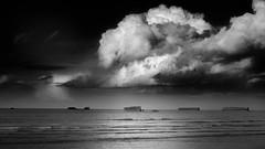Gold Beach - Normandy (twocanvandamm) Tags: wood france dday fujix goldbeach 06june1944 fujifilm sea textures beach fujixpro2 overlord fuji xphotographer across fujifilmacros normandy clouds ww2 arromancheslesbains fr