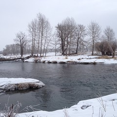 Spring Fish Creek Park Hiking (Mr. Happy Face - Peace :)) Tags: yyc hiking walking albertabound bowriver calgary alberta canada bikepaths scenery snowing chill art2018 weeklythemes water