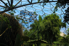 Eden (Karsten Fatur) Tags: travel travelphotography greenhouse tropicl eden edenproject cornwall england uk unitedkingdom britain greatbritain plants nature green sky dome europe