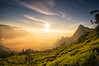 Morning Tea (Tracey Whitefoot) Tags: tracey whitefoot 2015 travel sunrise munnar india dawn tea plantation highest western ghats plant plants mountains mountain morning glow kolukkumalai estate tamilnadu indian beverage leaf adventure high top light